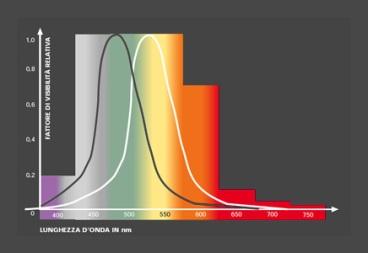 Curve di visibilità